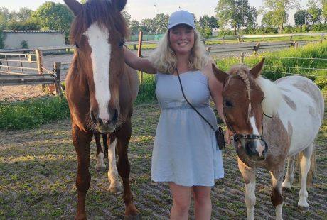 Header blog: Wat ik heb geleerd van het trainen met twee paarden, welsh, draver, pony