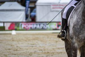 Header Blog: Straffen, wat is het effect op je paard? Straffen – net zoals gedrag bekrachtigen – werkt. Wanneer jij je paard straft voor gedrag X, en je doet dit op de juiste manier, dan zal gedrag X afnemen. Dit is het tegenovergestelde process van wanneer je gedrag bekrachtigt. Maar waar leidt straffen eigenlijk toe?