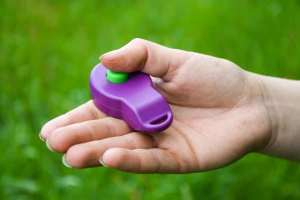 Producten: Ringclicker voor clickertraining met voerbeloningen. Hou je handen vrij tijdens het trainen met voerbeloningen door deze ringclicker. De ringclicker bevestig je om je vinger met elastiek.