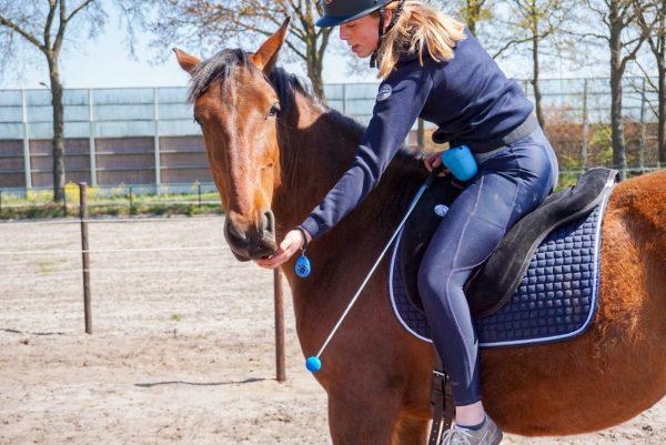Product: clickertraining set voor paarden en honden, trainen met positieve bekrachtiging. Complete clickertraining set voor het trainen met voerbeloningen! De set bestaat uit een beloningstasje, targetstick en een clicker.